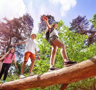 actividades para seguir aprendiendo en verano